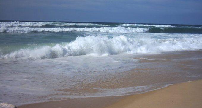 """Algues """"toxiques"""": seules 4 plages déconseillées à certains…"""