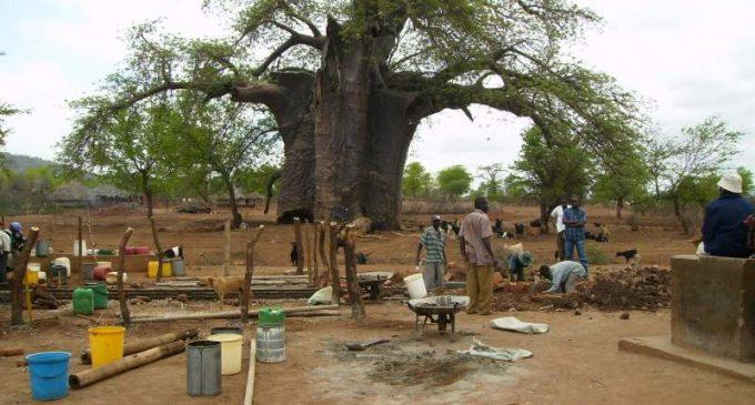 Le Zimbabwé : deux ou trois données à savoir