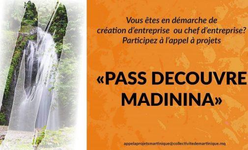 Pass Découvre Madinina :  Le dépôt des dossiers est reporté au 30 juin 2020