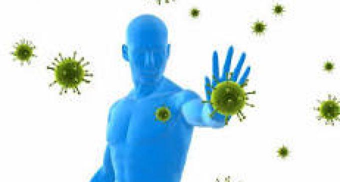 Notre système immunitaire.