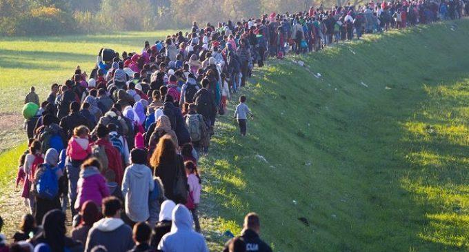 La crise sanitaire, prétexte à une fragilisation du droit d'asile, par Julian Fernandez, Thibaut Fleury Graff et Alexis Marie