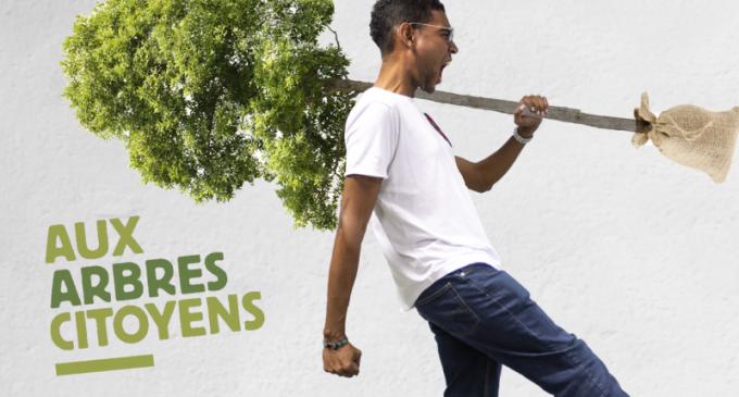 Plantons un million d'arbres en Martinique, an nou fèy !