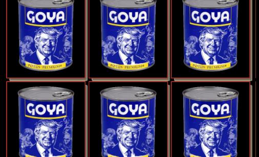 Goyaway (achetez l'affiche sur le tout nouveau www.badseedbook.com)