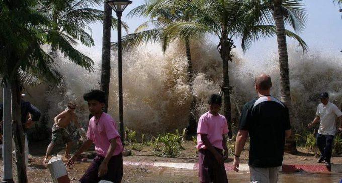 Alerter de l'arrivée d'un tsunami grâce aux ondes sismiques
