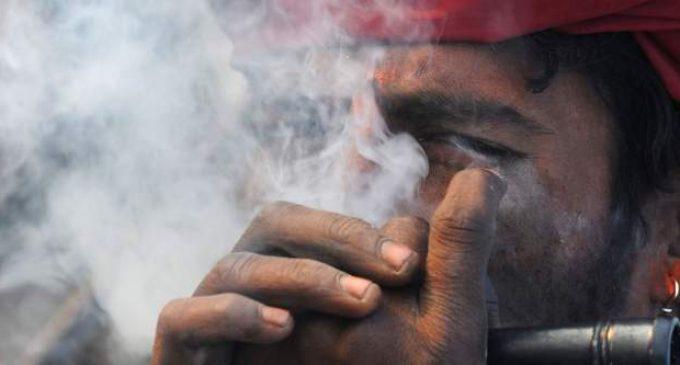 L'Inde, futur géant du cannabis