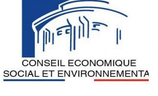 La déclinaison du plan de relance Outre-mer: avis du CESE