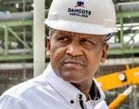 Cameroun : après le ciment, le Nigérian Aliko Dangote annonce des investissements dans le pétrole et le gaz