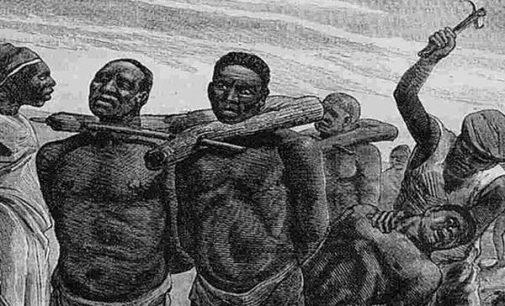Esclavage : «La complicité de monarques africains est une donnée objective», selon l'anthropologue sénégalais Tidiane N'Diaye