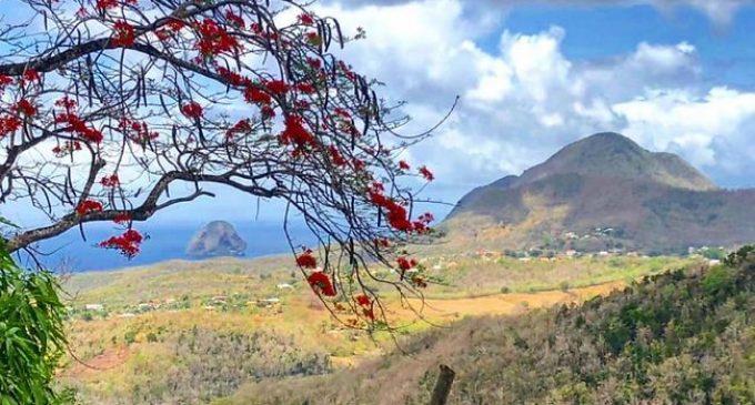La candidature de la Martinique au titre du label « Réserve mondiale de Biosphère » a été retenue.